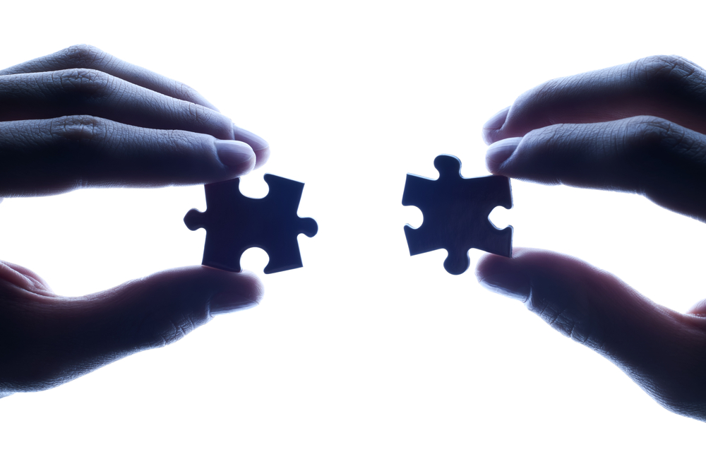 Partnership Strategy